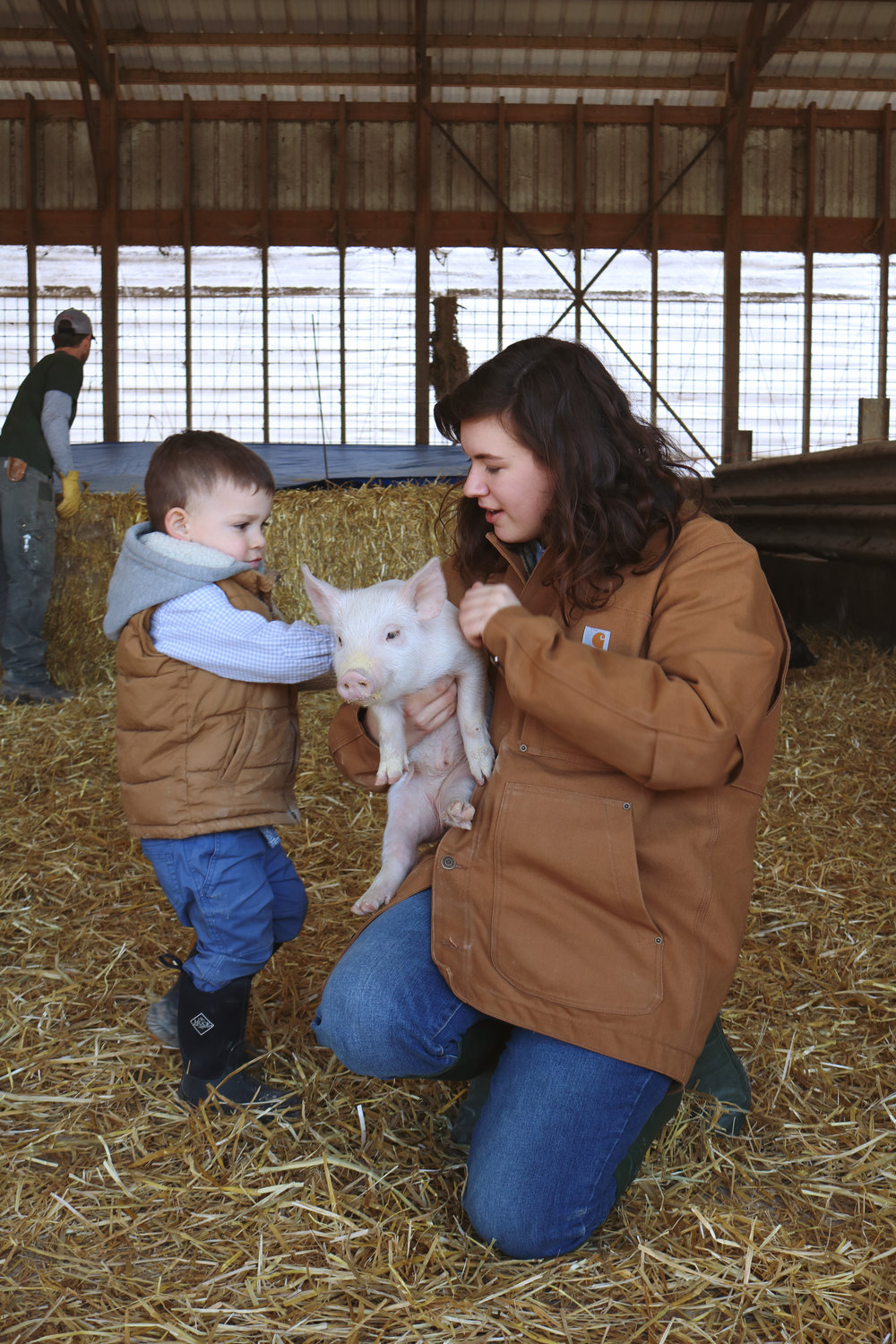 Playing With Baby Pigs - Under A Tin Roof Blog