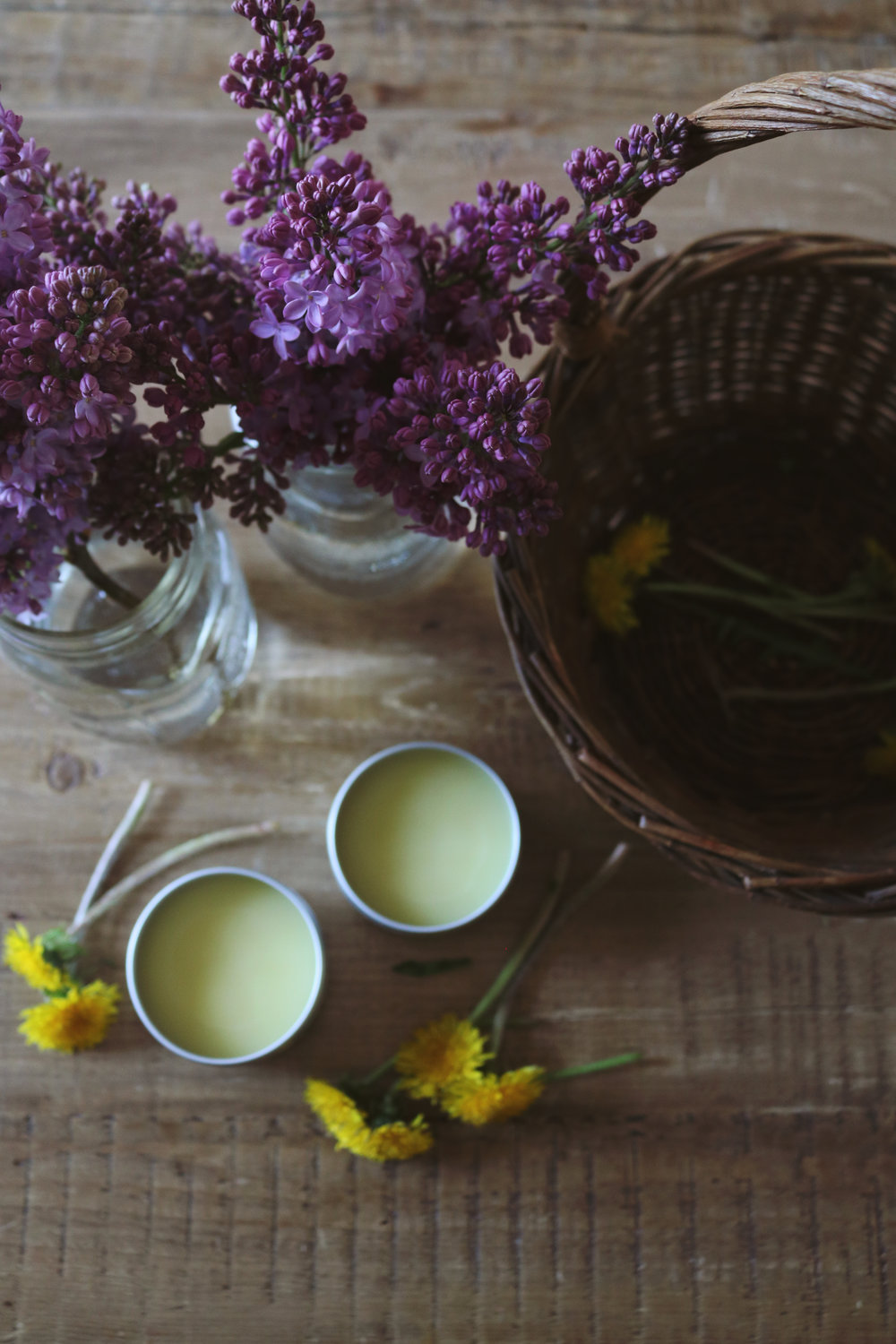 Dandelion Salve - Under A Tin Roof Blog