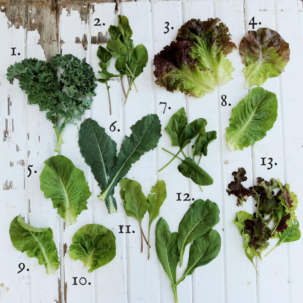 saladnumbers.jpg