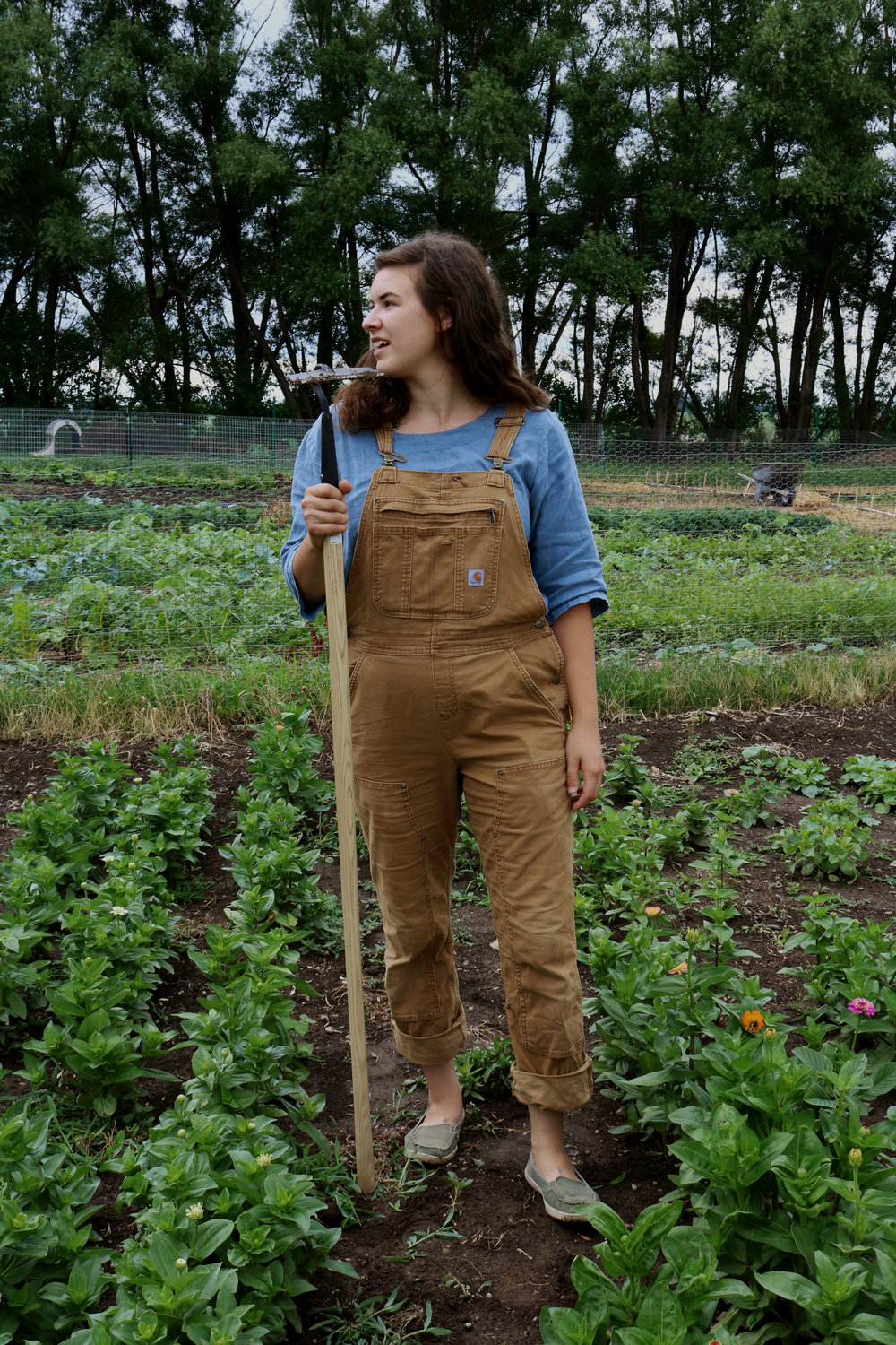 My Favorite Tools for Weeding - Under A Tin Roof Blog