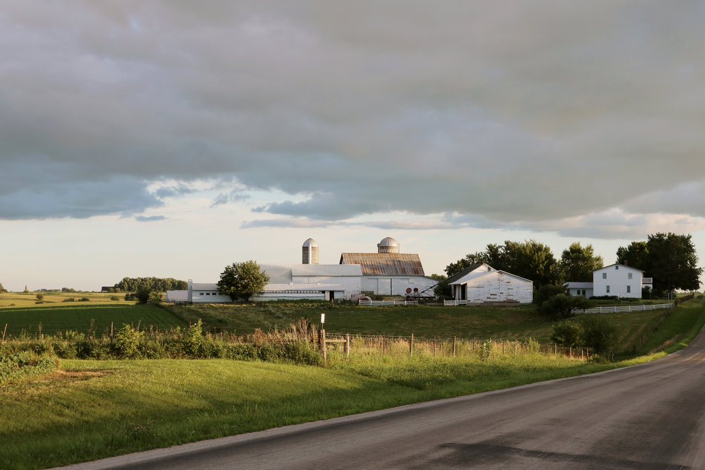 Amish Farms in the Summer - Under A Tin Roof Blog