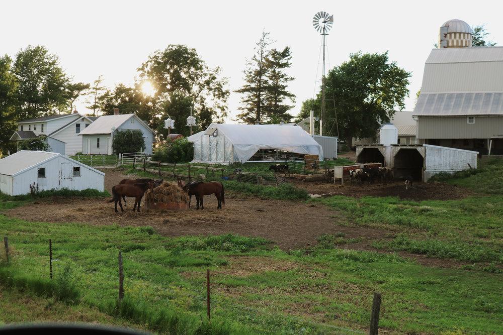farmtour3.jpg