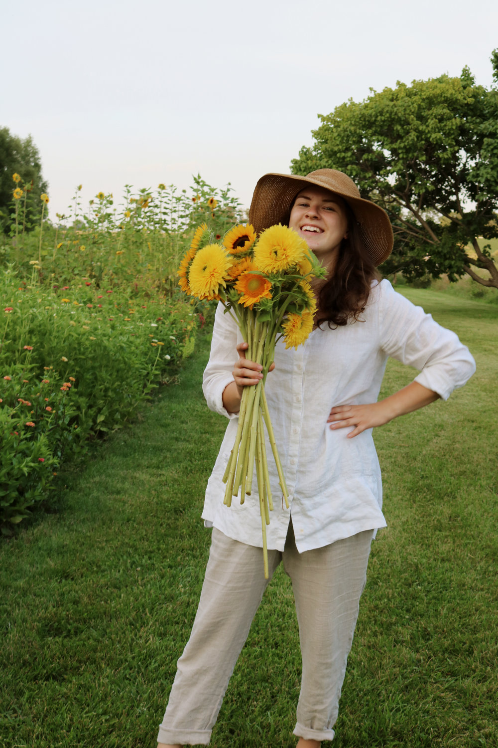 How to Grow and Harvest Sunflowers - Under A Tin Roof Blog
