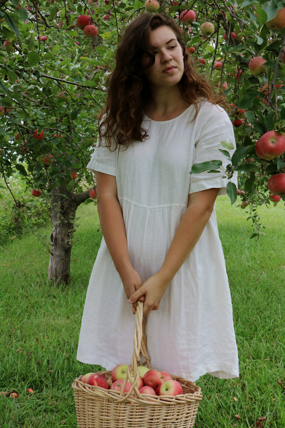 Homestead Update: What To Do With All This Aronia... - Under A Tin Roof Blog
