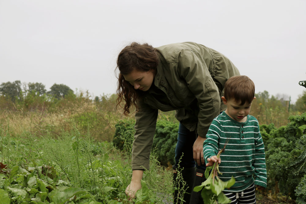 Farm Kid Chores for Toddlers - Under A Tin Roof Blog