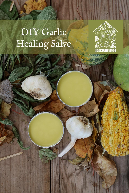 Garlic Salve - Under A Tin Roof Blog