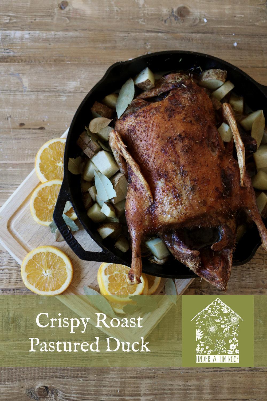 Crispy Roast Duck - Under A Tin Roof Blog