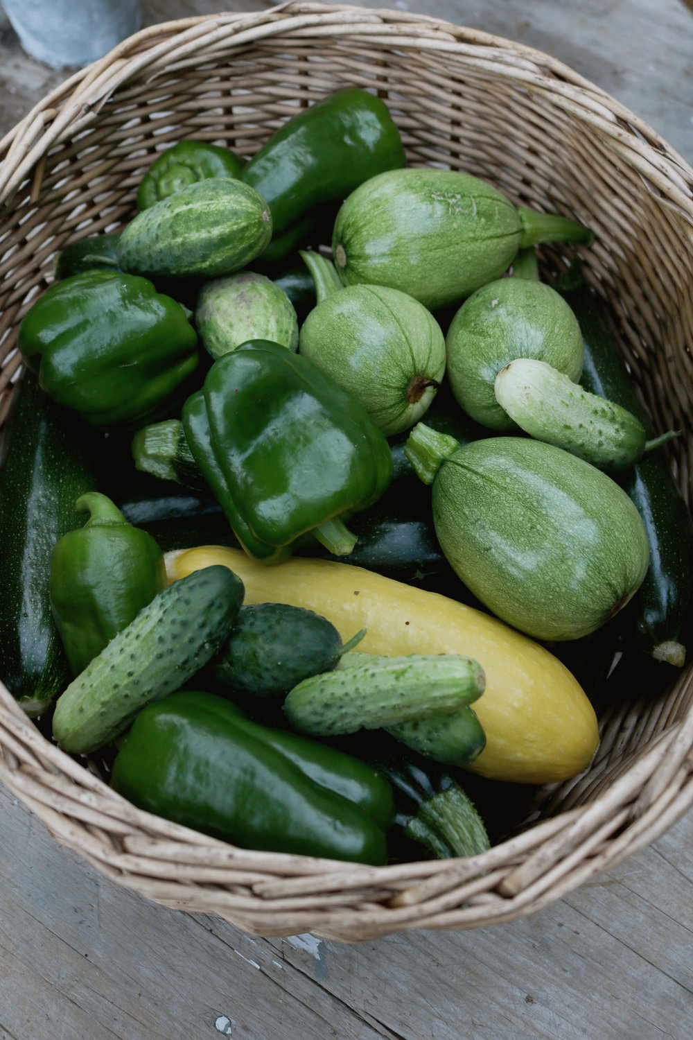 Is CSA Right for My Family? - Under A Tin Roof Blog