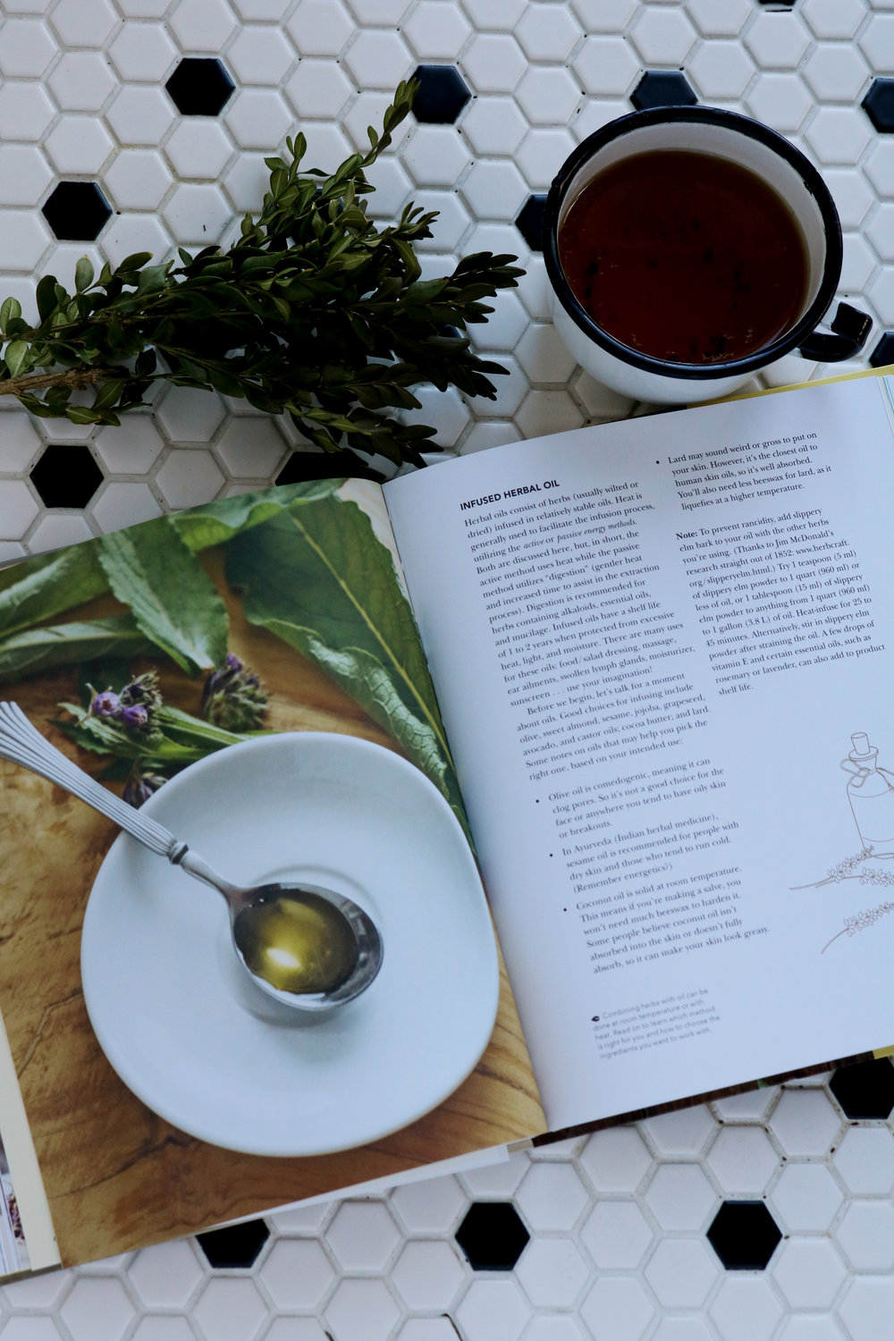 A Humble Book Review | The Herbal Handbook for Homesteaders - Under A Tin Roof Blog