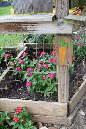 Carpenter Art Garden — Montgomery Martin Contractors
