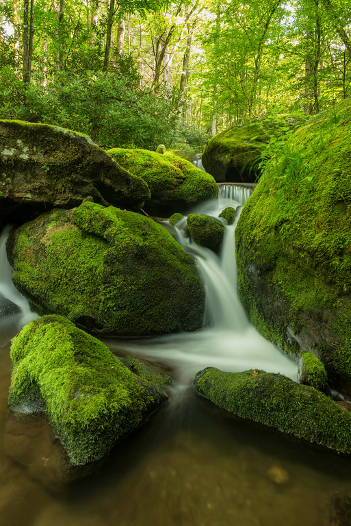 """Roaring Fork - Great Smoky Mountains National park"""