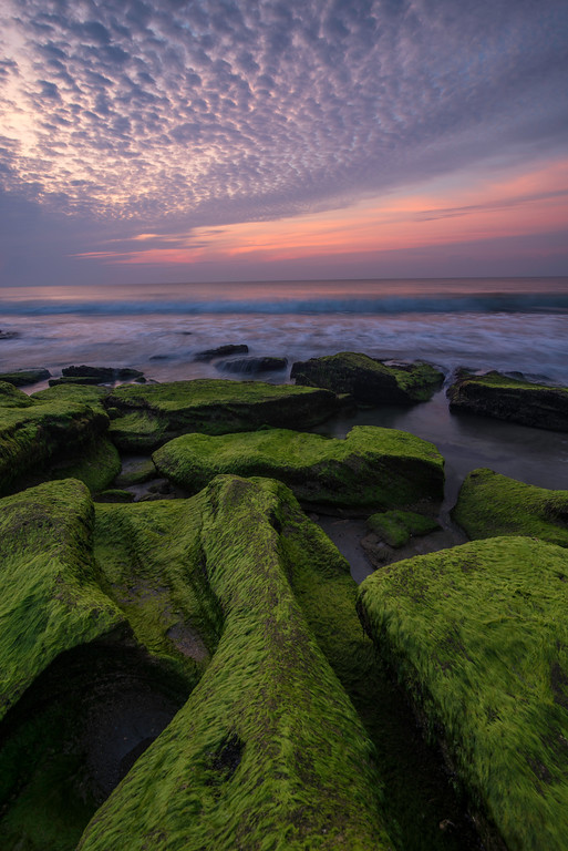 """Coquina Rocks at Fort Fisher NC"""