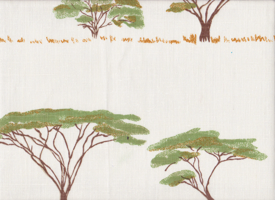Botswana Trees