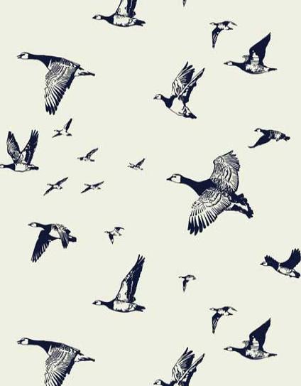 Flock in Flight