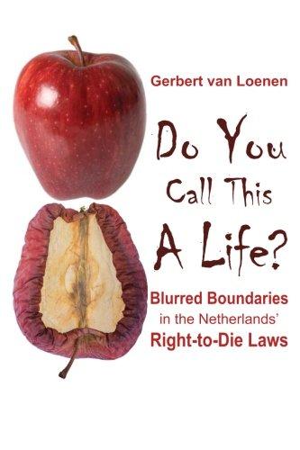 Gerbert van Loenen book