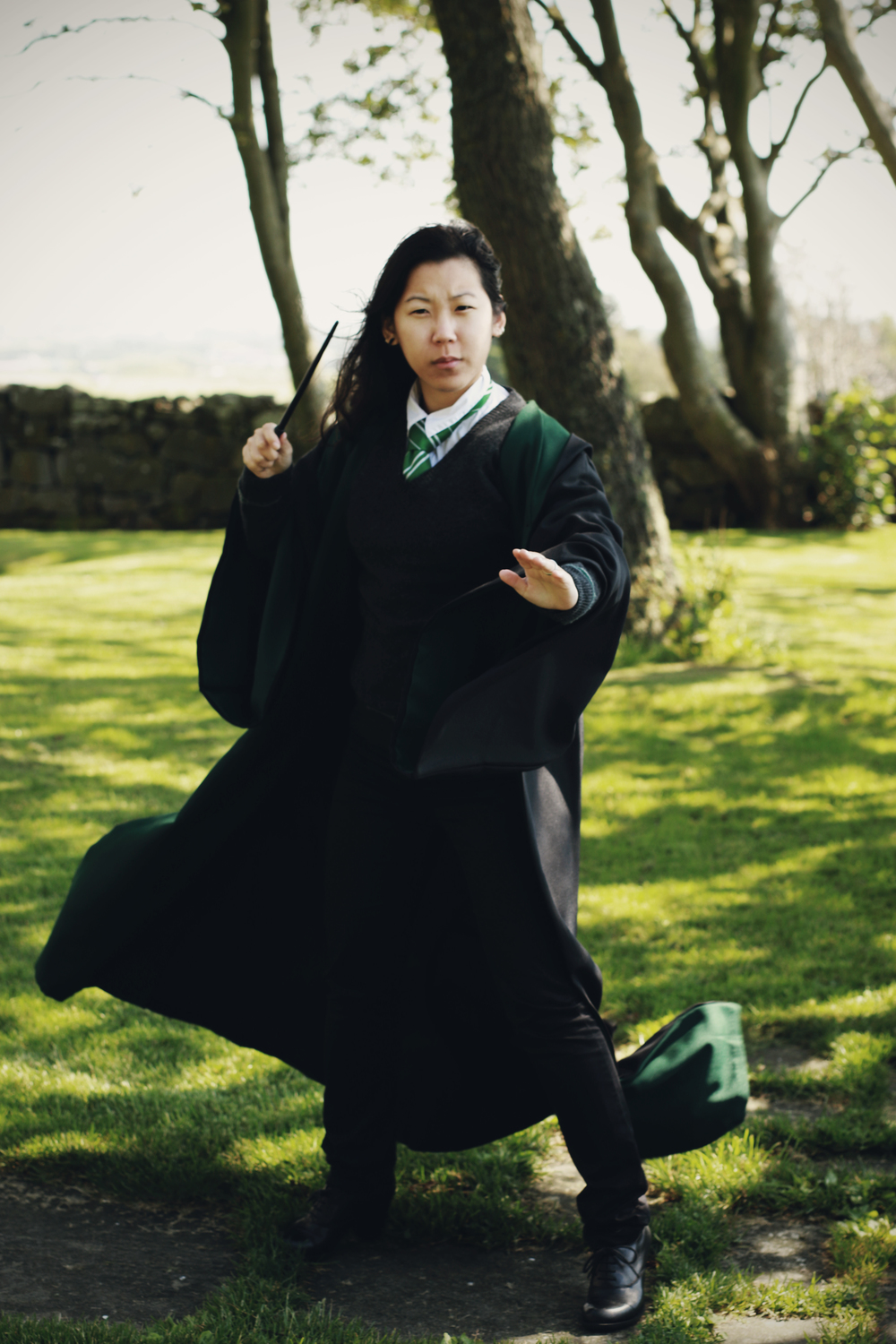 Slytherin102e2.jpg