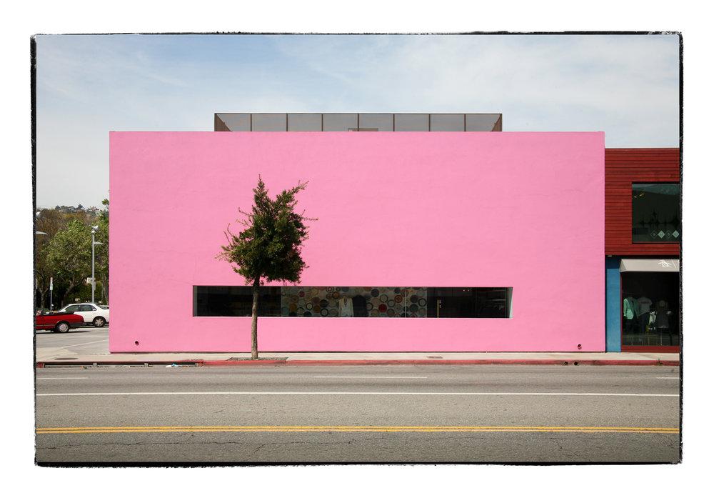 Pink_Print.jpg