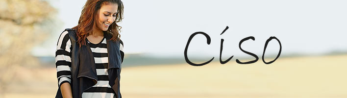 ciso_lp.jpg