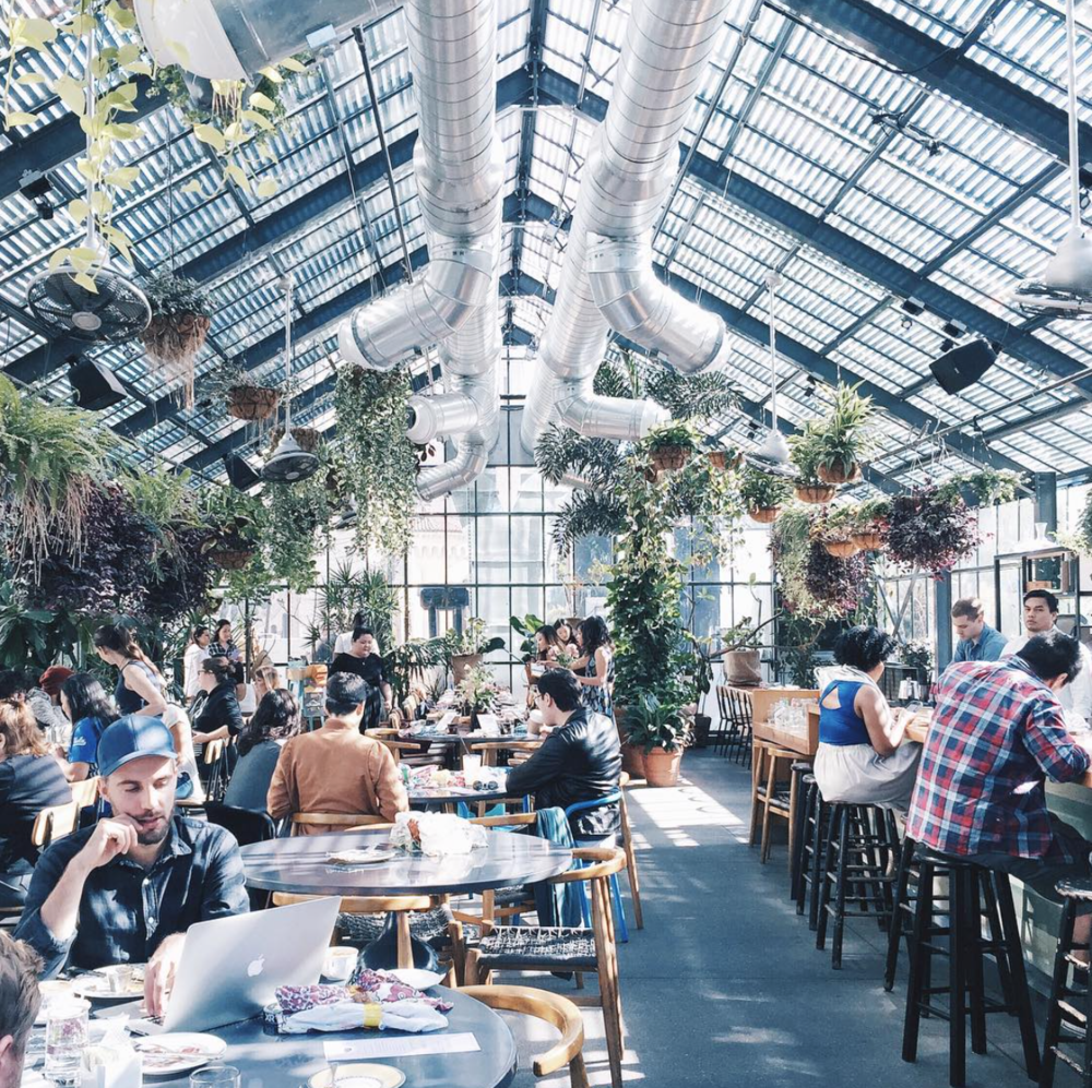There is actually not a single bad angle inside Commissary, the much-loved restaurant set inside a greenhouse. Set beside the shimmering pool it has all the amenities of a private club that's open to the public.   Credit:  The Awesome Candle
