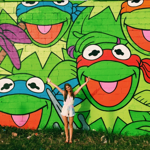 Jerk Face Kermit Wall - Bradley St. + Dekalb Ave