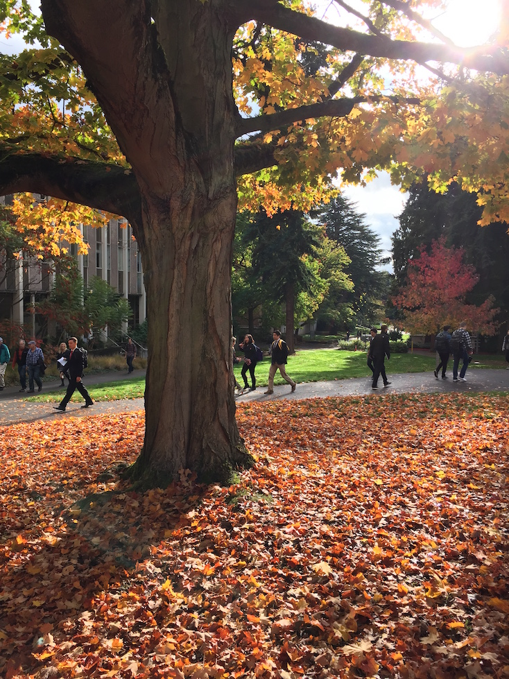 October outside PACCAR. Photo Credit: Nelson Tang