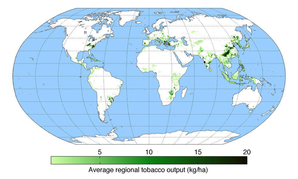 Worldwide tobacco production.  Map by AndrewMT