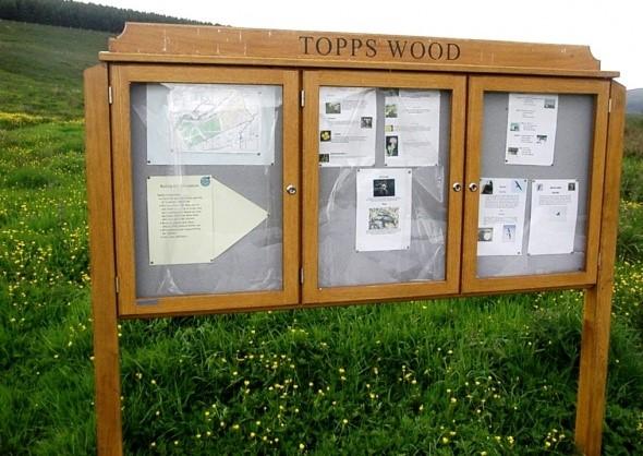 Topps Community Woodland