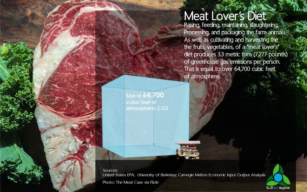 Diet - Meat Lover Diet Infographic.jpg