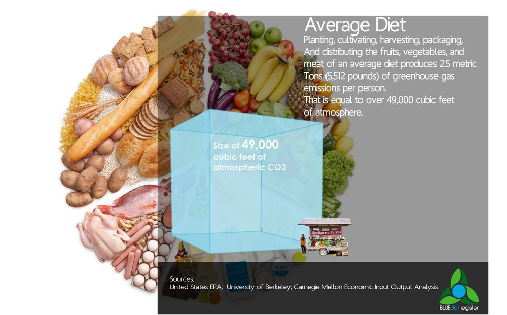 Diet - Average Diet Infographic.jpg
