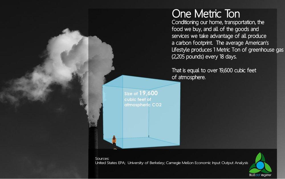 1 ton Infographic.jpg