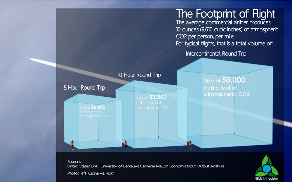 Impact of flight Infographic.jpg