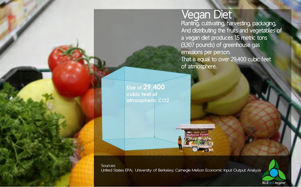 Diet - Vegan Infographic.jpg