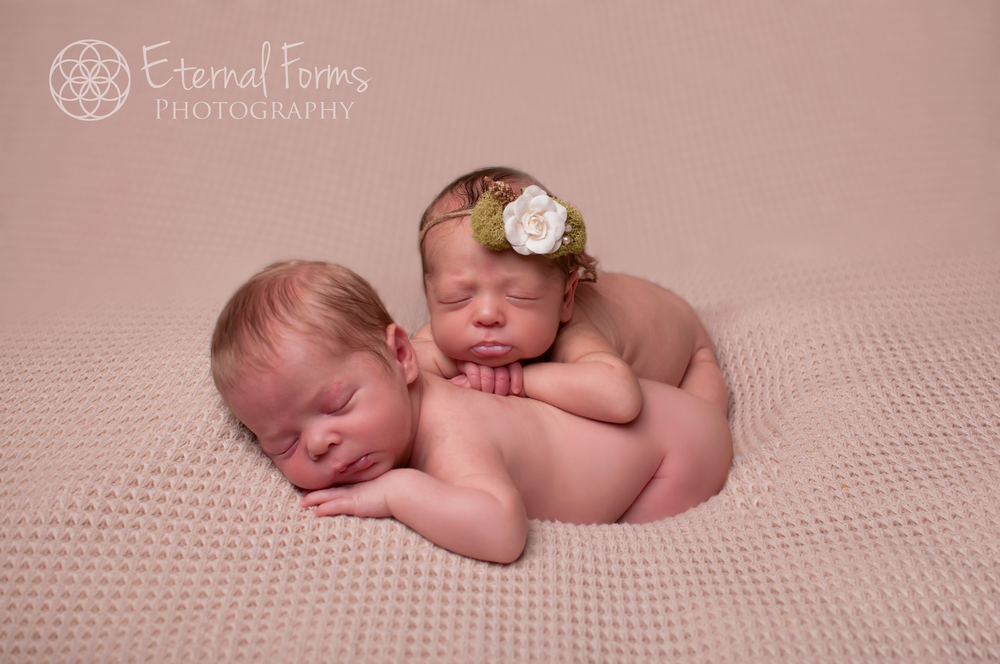 twin newborn portraits for Austin Texas