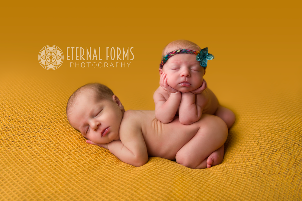 round rock newborn twin photographer 8