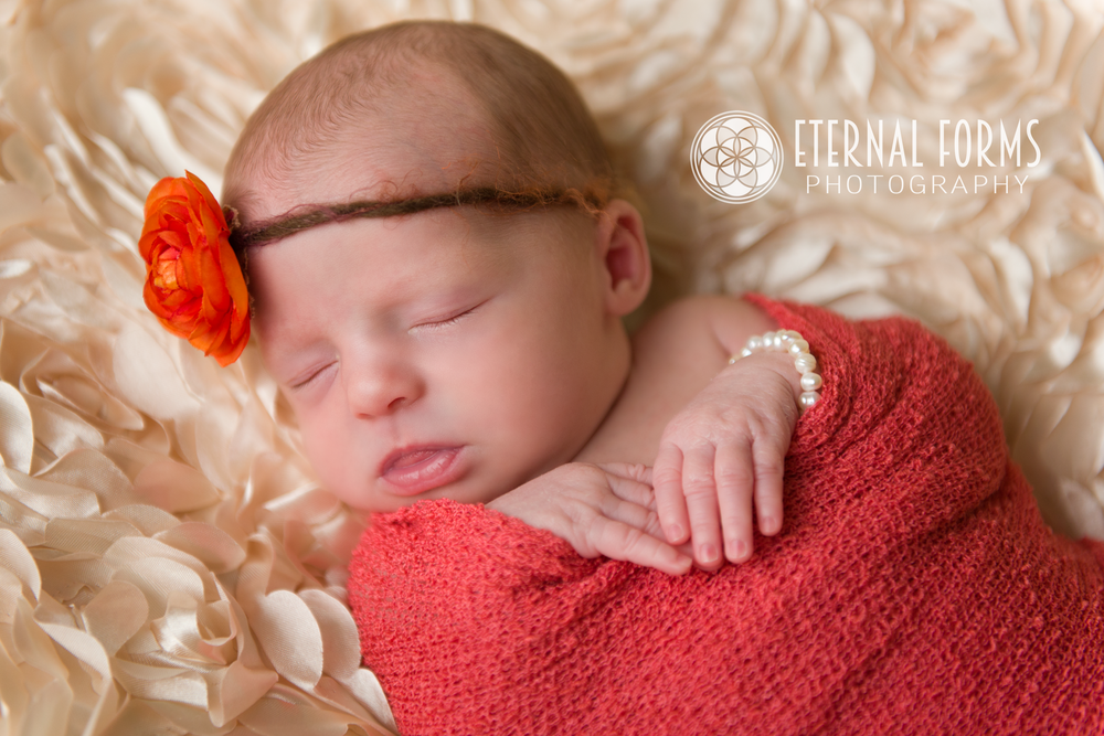round rock newborn twin photographer 1