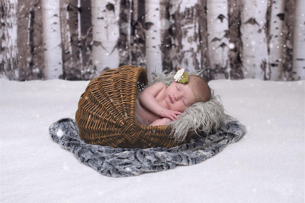 newborn baby in the snowy aspens