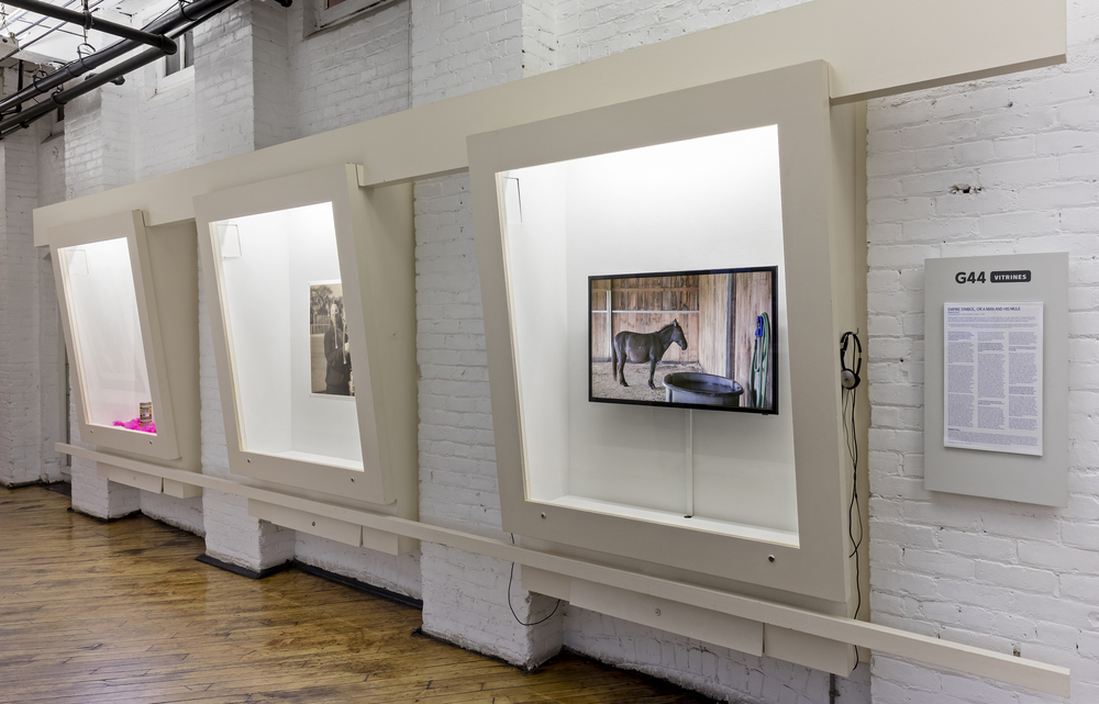 Installation view at Gallery44