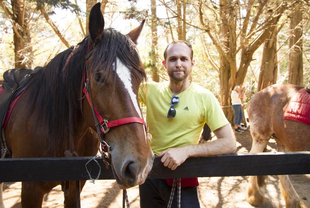 Sam_horse.jpg
