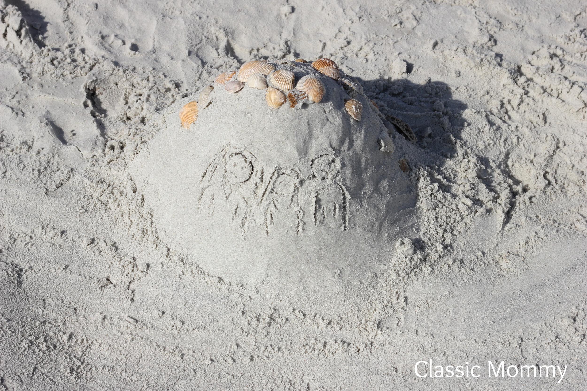 anastasia state park sandcastle