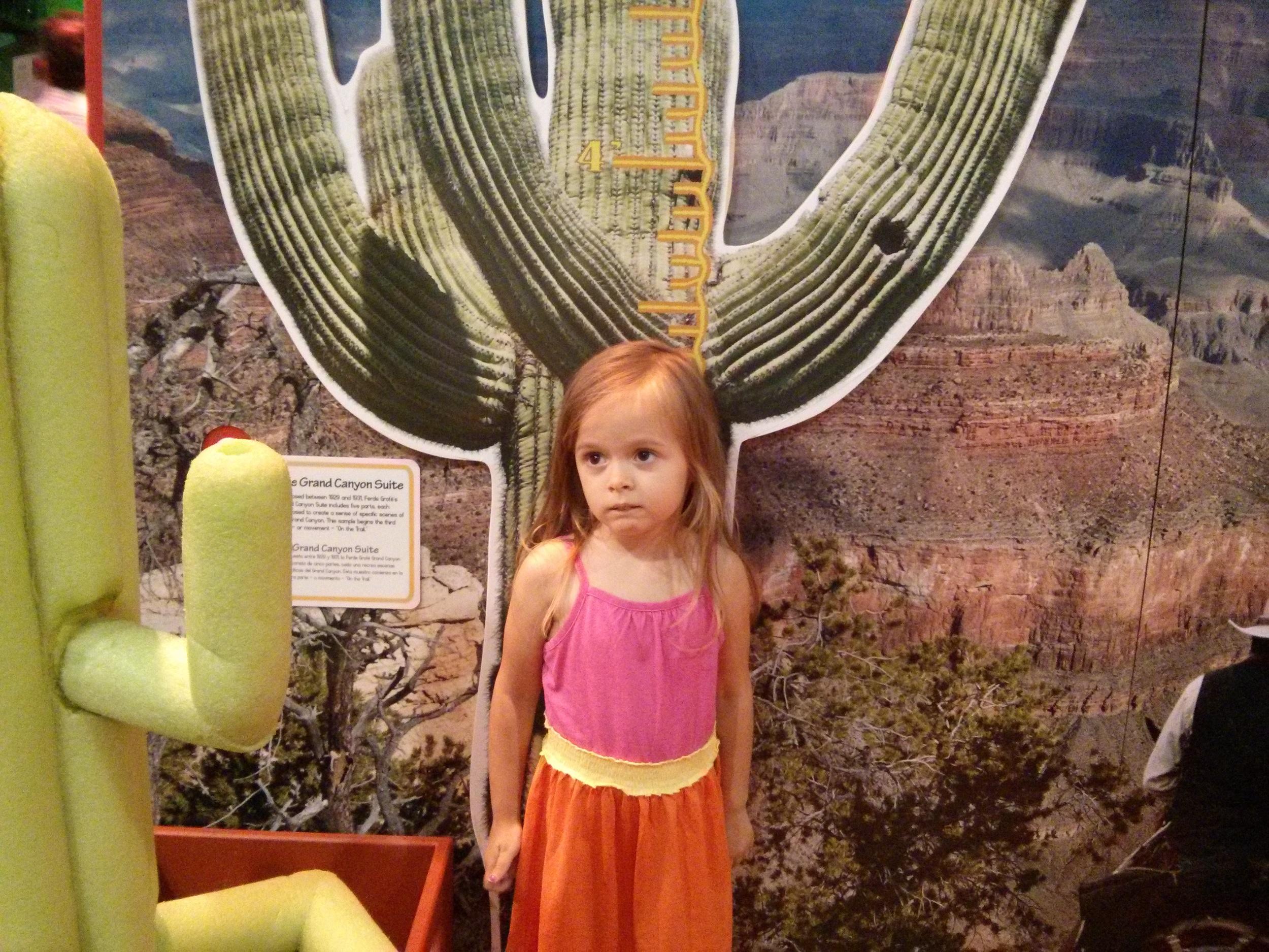 Arizona Cactus Children's Museum of Atlanta