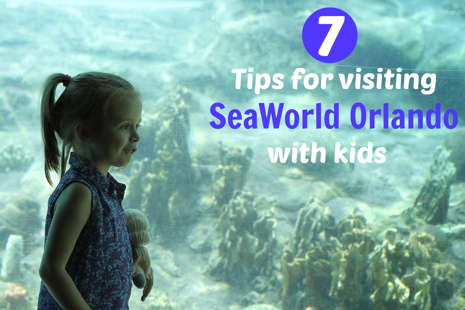 SeaWorld Orlando Family Travel Tips