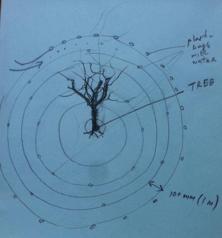 Artist's preliminary sketch