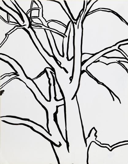 Humboldt Park Tree