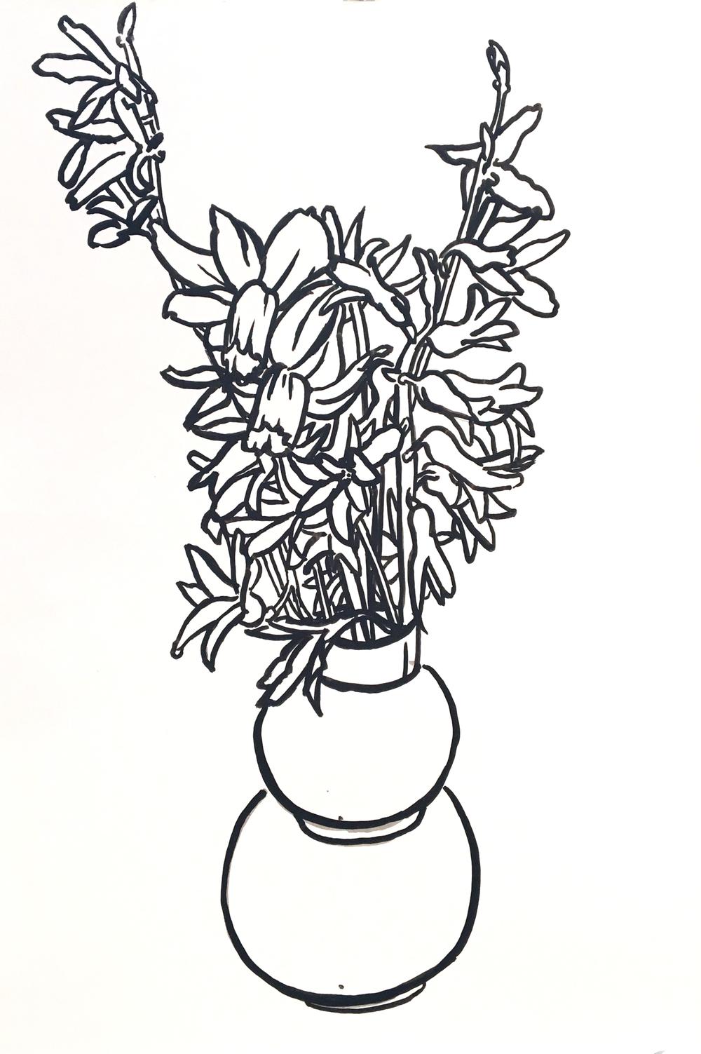 Hyacinth Forsythia Daffodil