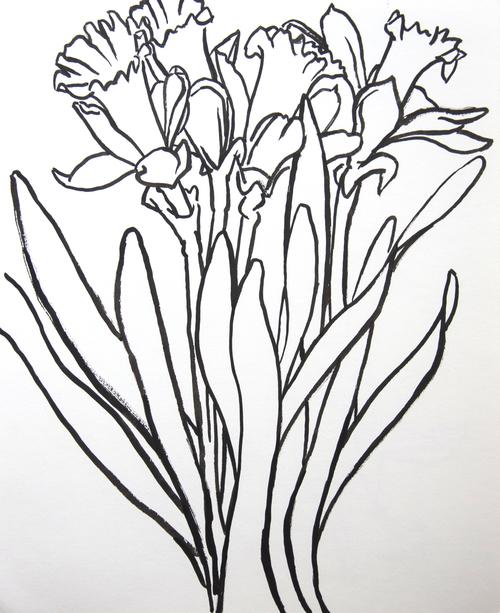 4 Daffodils