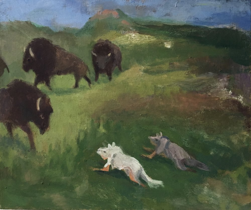 Buffalo Hunt, 2016