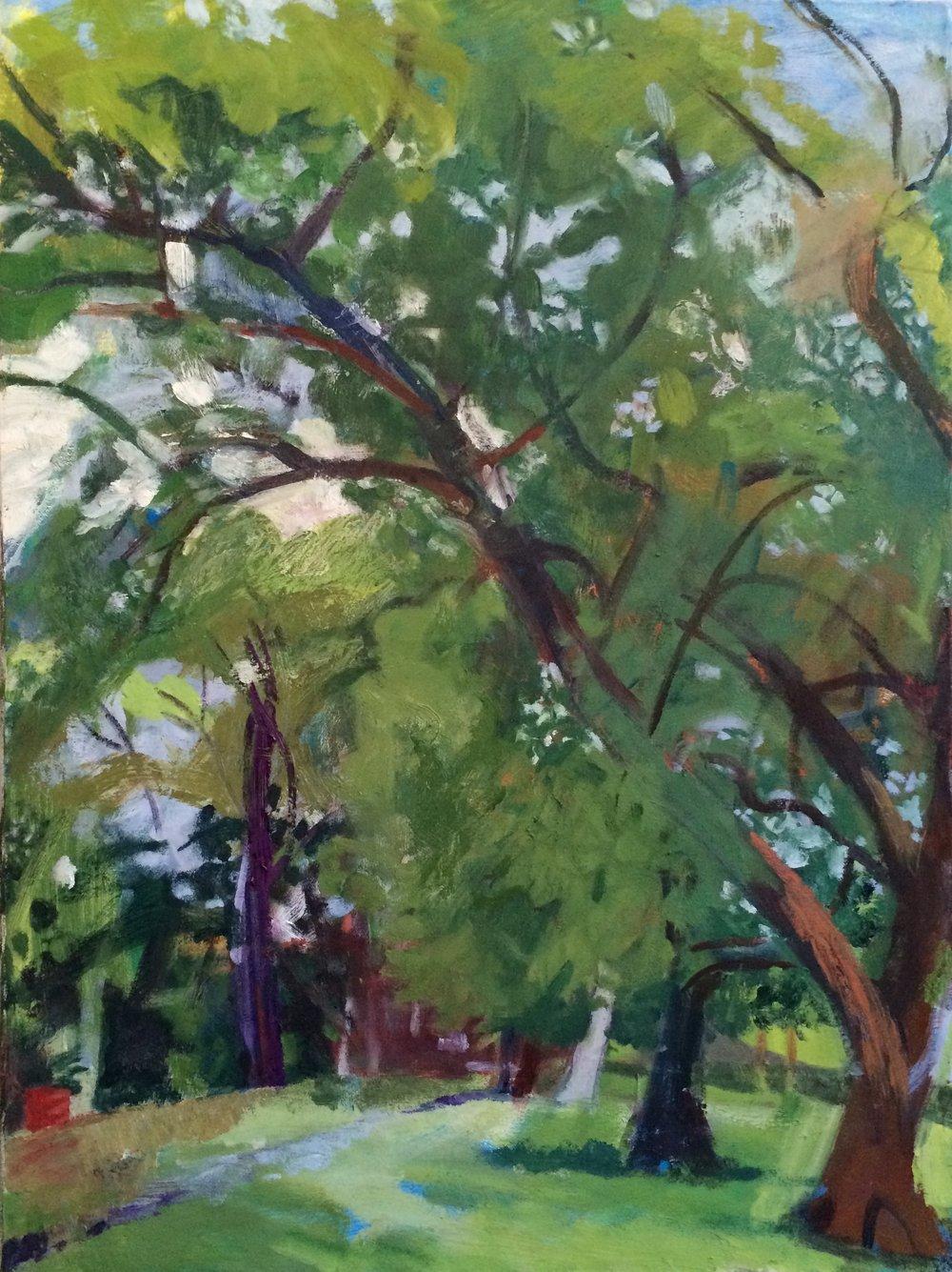 Leaning Tree, Humboldt Park, 2013