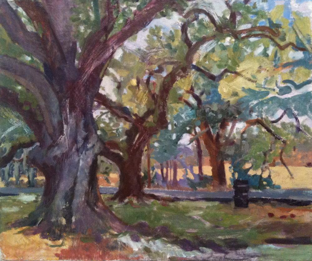 Audubon Park (under the trees), 2010