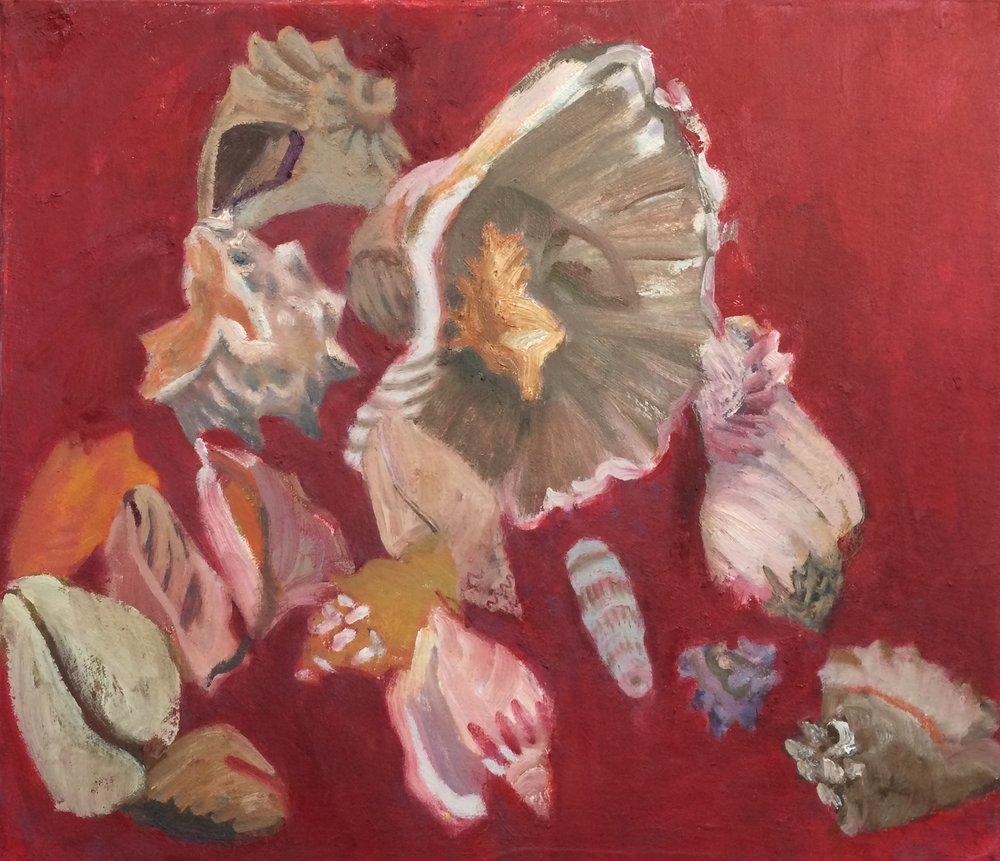 16 Shells