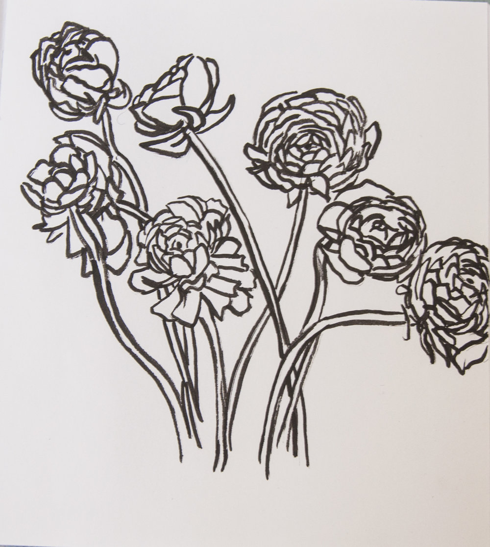 Seven Ranunculus